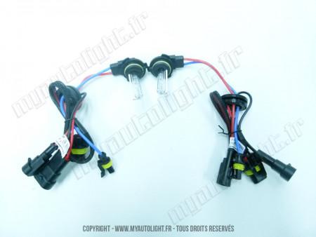 Ampoules Xénon H10 55W 6000K