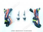 Ampoules EASY XENON H1R 35W 5500K – Déconnectable